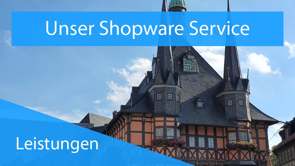 Plugin Support - Shopware Service - Thumbnail
